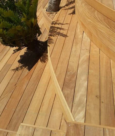 Deck with curves and cycads_edited
